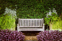 A Wooden Bench In The Garden S...