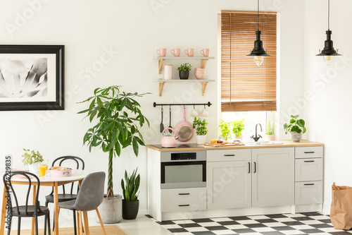 Real Photo Of A Modern Kitchen Interior With Cupboards Plants