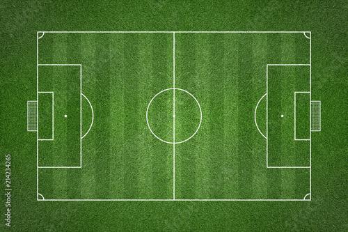 Fotografie, Obraz  Soccer Grass Field with Chalk Lines