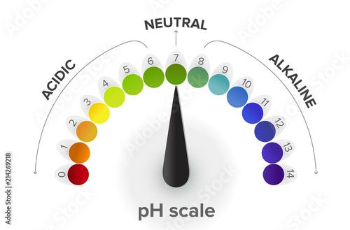 Misurazione della scala pH , manometro, infografica Wallpaper Mural