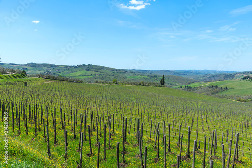 Foto op Aluminium Blauw Panoramic view of countryside and vineyards in the Chianti region, Tuscany, Italy.