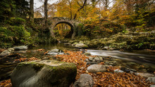 Foley's Bridge, Tollymore Forest Park. Northern Ireland.