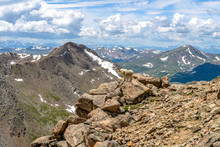 Mountain Goat On Cliff - A Mountain Goat Standing On A Steep Rocky Cliff In Front Of Mount Bierstadt And Rolling Front Range Of Rocky Mountains, Colorado, USA.
