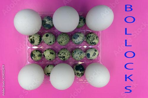 Valokuva  Chicken and quail eggs healthy organic raw shell,