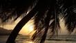 Sonnenuntergang unter Plamen