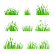 Green Grass Set. Silhouette of Plants. Cartoon Style Vector Illustration