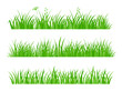 Beautiful Fresh Green Spring Gras. Set of Borders for Use as Design Elements Isolated on White Background. Cartoon Style Vector Illustration