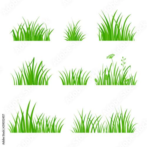 Fototapeta Green Grass Set. Silhouette of Plants. Cartoon Style Vector Illustration obraz na płótnie