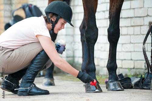 Fotografie, Obraz Groomer horsewoman taking care of chestnut horse hoof.