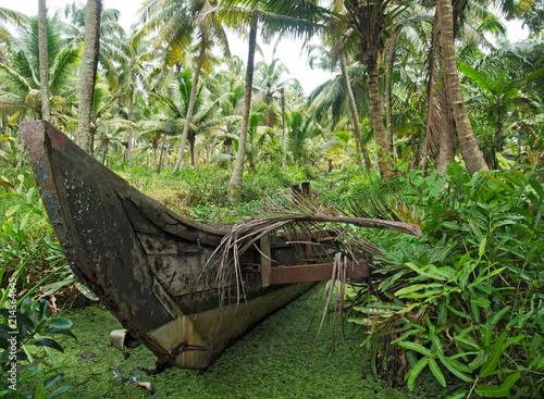 Fotografie, Obraz  Traditionelles Boot in den Backwaters, Bundesstaat Kerala, Südindien, Indien, As