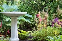 Stone Bird Bath In Flower Garden