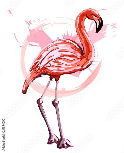 rozowy-flaming-w-stylu-szkicu-na-bialym-tle-ilustracji-wektorowych