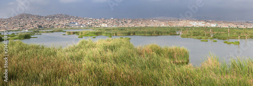 Foto  LIMA, PERU: Wetlands of Villa, In chorrillos district.