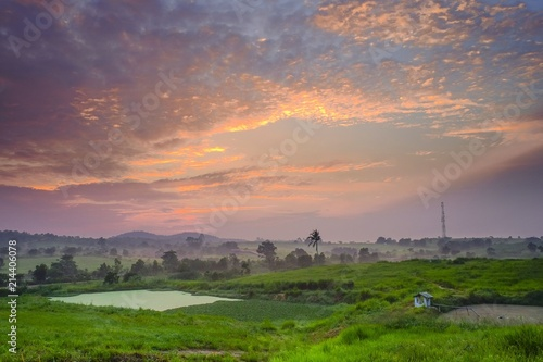 Agricultural landscape in First Dairy Farm during sunset.