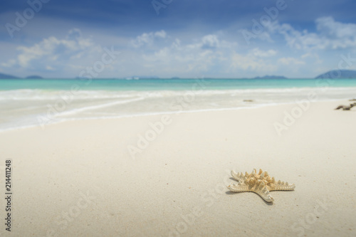 Staande foto Strand Starfish on beautiful tropical beach background with horizon blue sky and white sand. Summer concept.