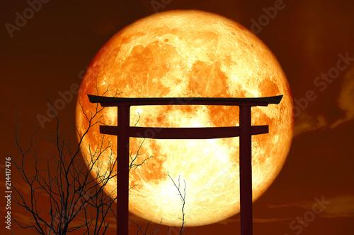 silhouette torii wooden Japanese pillar stand over sea sunset sky