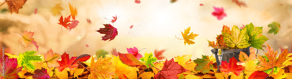Fototapeta Indian Summer Background