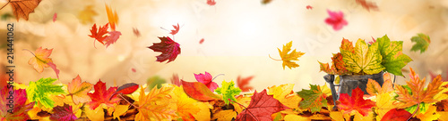 Poster de jardin Beige Indian Summer Background