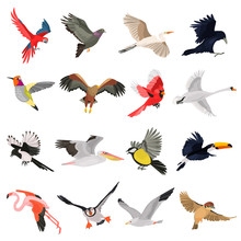 Flying Birds High Quality Icon...