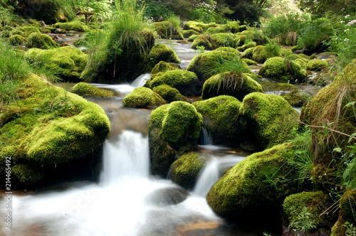 wodospad, woda, rzeka, potok, charakter, bory, zieleń, krajobraz, kaskada, mech, kamienie, jary, opoka, góra, creek, przepływ, opad, opad, przepływające, beuty, piękne, opoka, ruch, swiezy