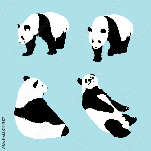 Fototapeta premium zestaw panda na niebieskim tle, ilustracji wektorowych zwierząt dzikich zwierząt