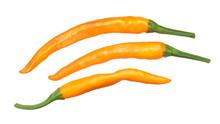 Macska Narancas Peppers, Paths...