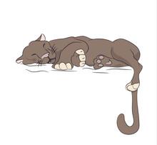 Lioness Sleeping, Vector