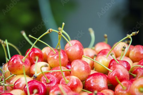 Fotografia  Red yellow cherries with petioles - background