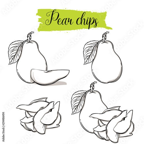 Hand drawn sketch style Pear set  Single, group fruits, pear