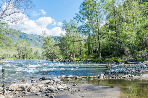 Deurstickers Rivier Mountain altay summer river