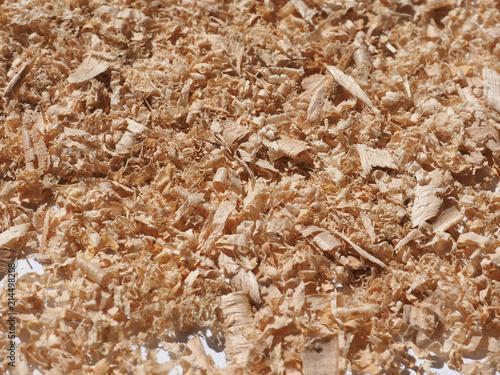 Fotografie, Obraz  Sawdust wood dust