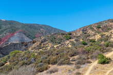 Mountain Bike Trails In Southern California Mountains Next To Recent Forest Fire Burn Area