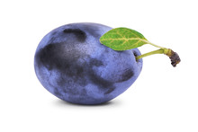 One Ripe Plum With Green Leaf