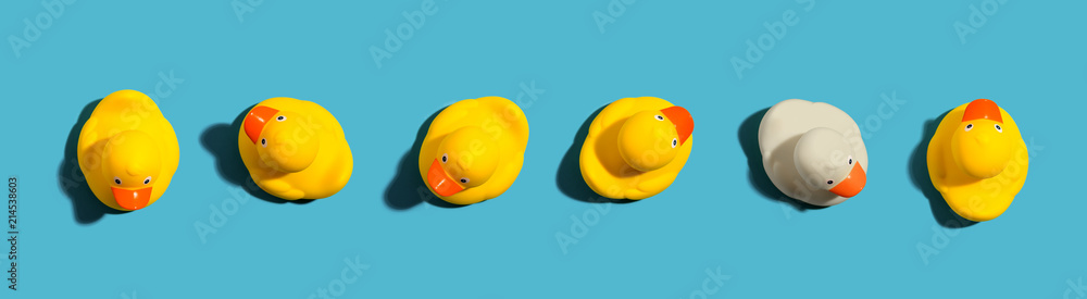 Fototapety, obrazy: One out unique rubber duck concept on a blue background