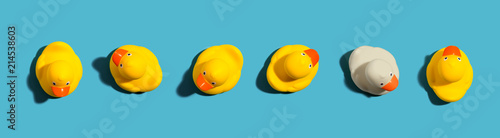 Fotografia One out unique rubber duck concept on a blue background