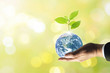 canvas print picture - Planet earth with beautiful freshness growth tree and drop of water holed by hand of business man on outdoor summer forest bokeh background.Earth image furnished by NASA.