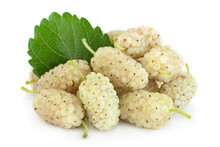 White Mulberry Berry Isolated