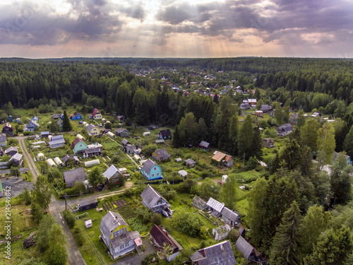 Village in pine forest aerial view