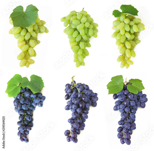 Fotografiet  grapes set isolated on white background