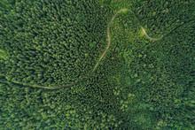 Aerial View Of A Road In A Dee...