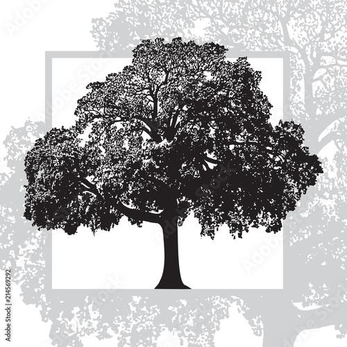 realistyczny-naturalny-obfitolistny-drzewo-odizolowywajacy-na-bialym-tle-abstrakcjonistyczna