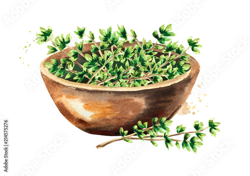 Fototapeta Kitchen herb Thyme. Bowl with green leaves. Hand drawn watercolor illustration isolated on white background obraz