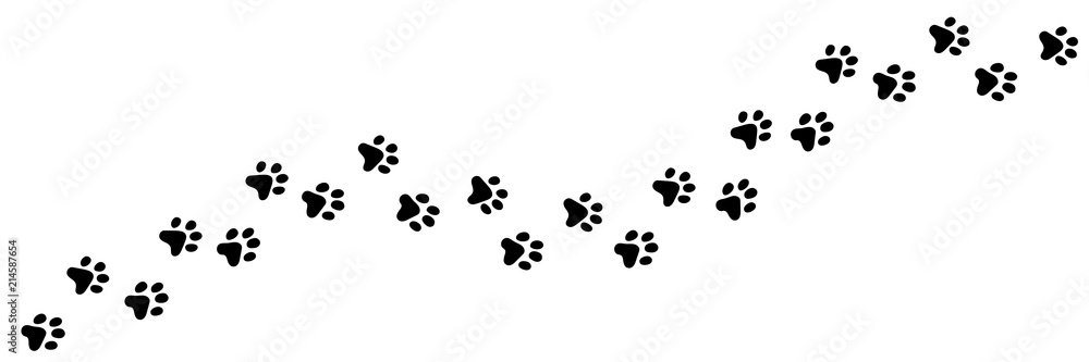 Fototapety, obrazy: Paw vector foot trail print of cat. Dog, puppy silhouette animal diagonal tracks for t-shirts, backgrounds, patterns, websites, showcases design, greeting cards, child prints and etc.