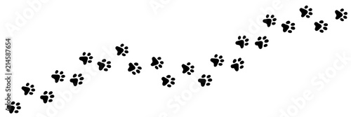 Paw vector foot trail print of cat Canvas Print