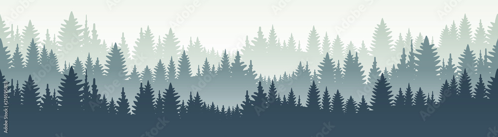 Fototapety, obrazy: Seamless forest landscape. Vector illustration. Layered trees background. Outdoor and hiking concept.