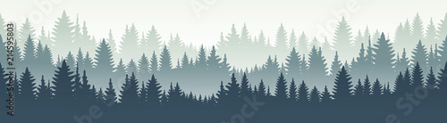 Seamless forest landscape. Vector illustration. Layered trees background. Outdoor and hiking concept. - 214595803