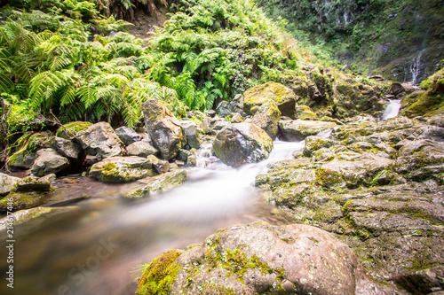 Canvas Print Waterfall on Levada Caldeirao Verde, Madeira, Portugal