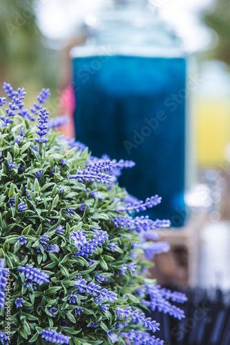 Tuinposter Lavendel Décoration Lavande