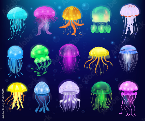 Fototapeta premium Meduza wektor galaretka oceaniczna lub galaretka morska i podwodna pokrzywa lub meduza ilustracja zestaw egzotycznych galaretowatych świecących meduzy lub ryb w morzu na białym tle na tle