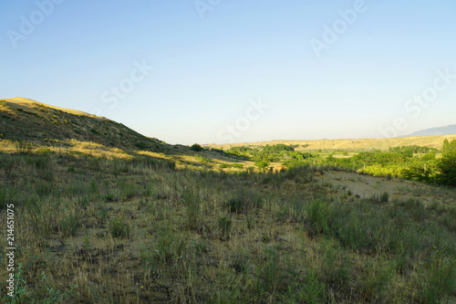 View of mountain barkhan Sarykum with yellow sand Wallpaper Mural